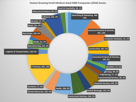 The Fastest Growing 5000 Small Medium Sized and Young Companies :  What can we learn from them?