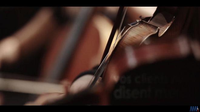 Violon12.jpg