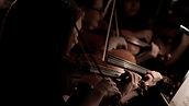 Violons01.jpg