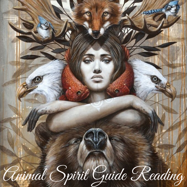 Animal Spirit Guide Reading