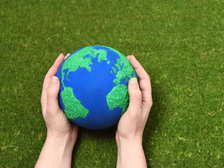 Sustainability in Hospitality: embracing green initiatives