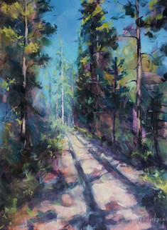 Sunny trail, 18 x 24 inch, oil on canvas