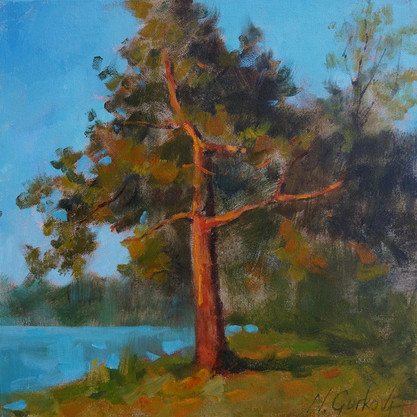 Pines_Nadia Gurkova_12-12-oil on canvas.