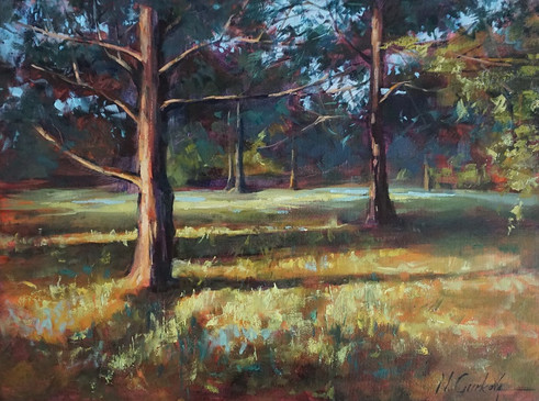 Pines, 18 x 24 inch, oil on canvas, sold