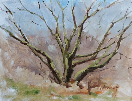 Spring tree study, oil on canvas, 12 x 16 inch