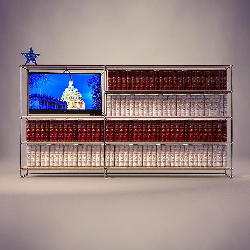 election-vote-2020-poster-illustration-u