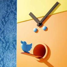 Tweeter in Chief
