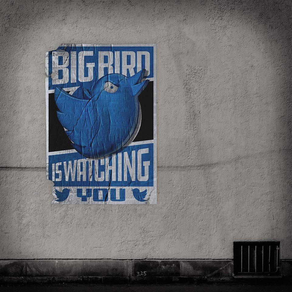 Big-Bird-is-Watching-You.jpg