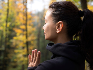 Why you Need to try Forest Bathing