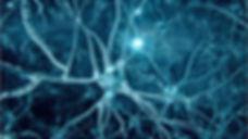 Adelaide psychologist, neuroplasticity, Marie Bukman psychologist