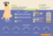 Kangal-Infographic.png