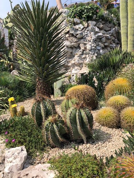 Jardin Exotique - Ezé - Riviera Francesa