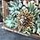Thumbnail: Succulents Brick Mold