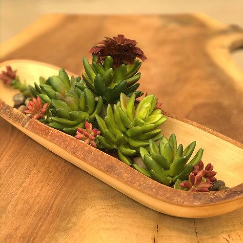 Succulents Boat