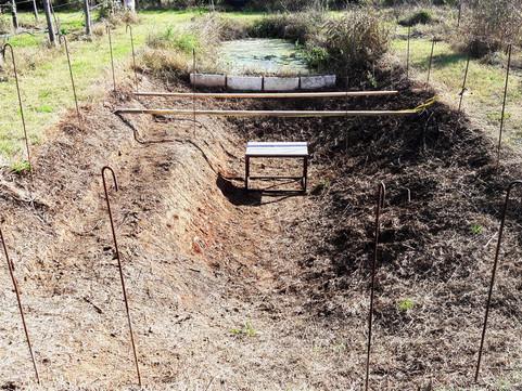 Una zona coltivata, ad ombreggiatura permanente e multifunzione. Proviamo ?
