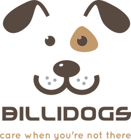 Billingshurst dog walker