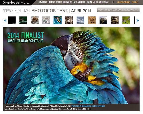 11th Annual Photocontest remporté par Azure de Perroquet Pirate