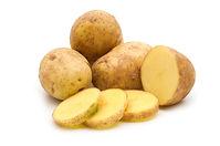 Pomme de terre Aliments toxiques pour les perroquets
