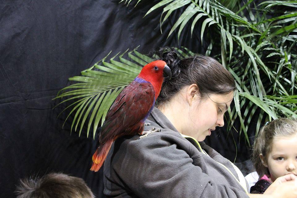 Salon des animaux de Québec 1e