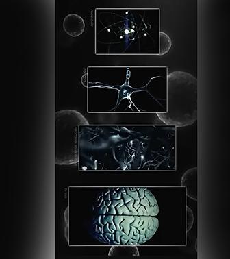 квантовое сознание, квантовое мышление, метод QWC