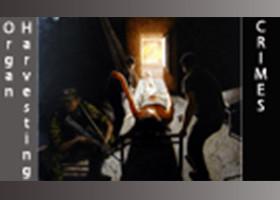 活摘内幕:一份沉甸甸的实名证词