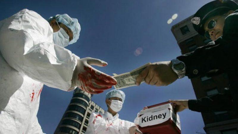 图为由真人演示的中共活摘器官暴行。(JIM WATSON/AFP/Getty Images) (NTD)