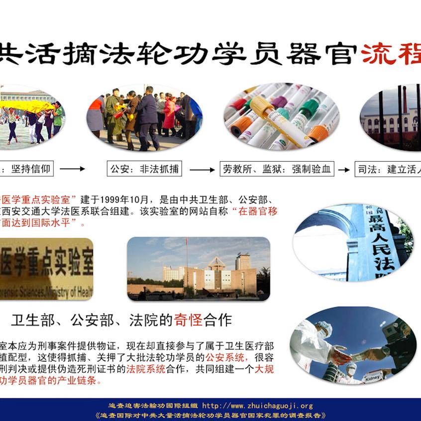 中共活摘法轮功学员器官路线图(追查迫害法轮功国际组织)