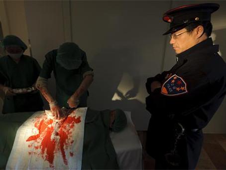 《纽约邮报》:前医院职员见证活摘器官