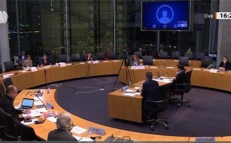 德国国会人权听证会 揭露中共扼杀信仰
