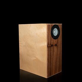 Shinjitsu Full Range Speaker