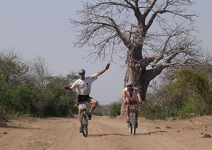 Digby-Cycling-Kruger.jpg