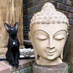 Buddha with Kivuli