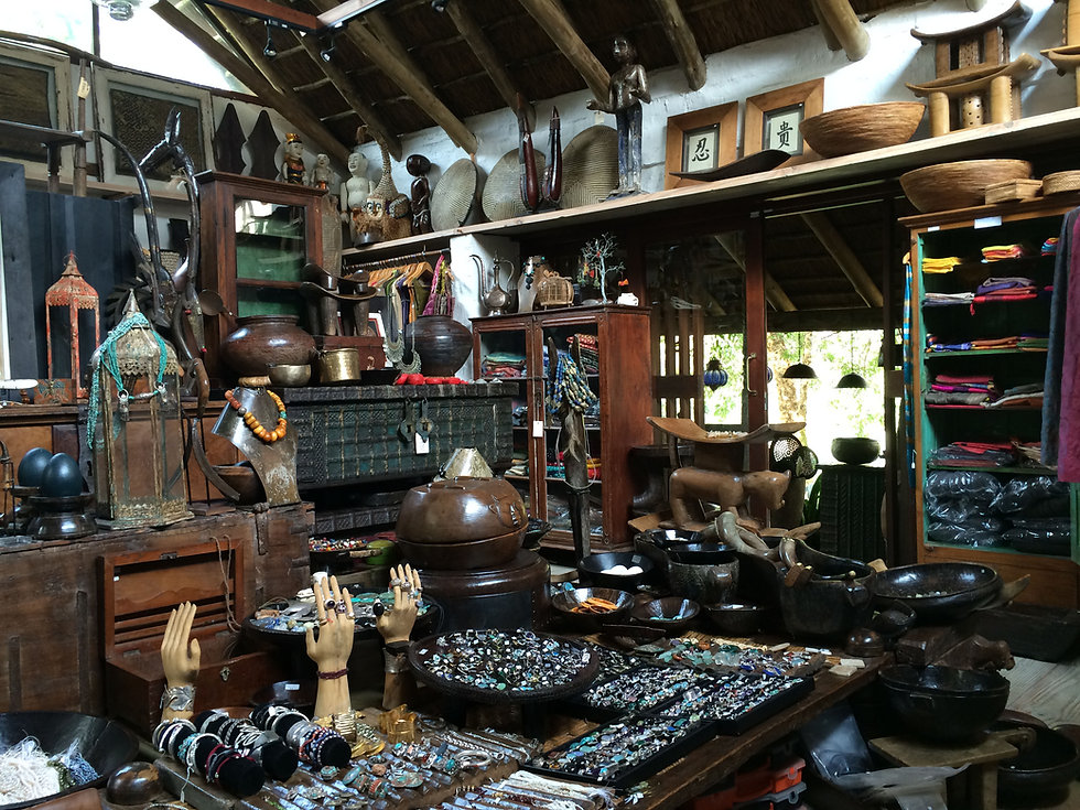 Cinda Hunter's Showroom