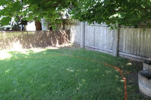New lawn edge