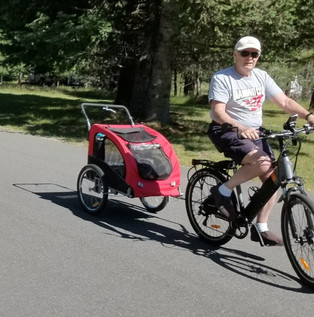 The e-bike pulls the dogs great!