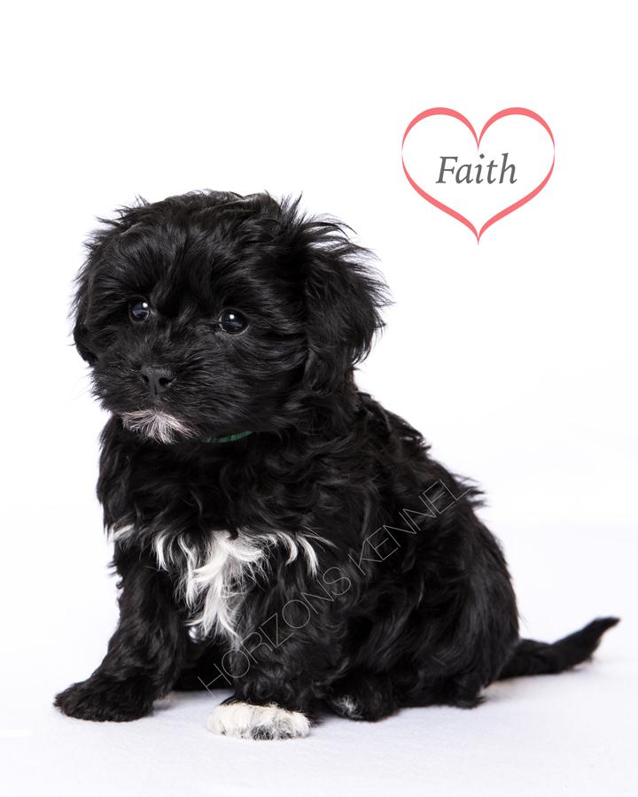 2015-12-26 faith-pi female Faith 3
