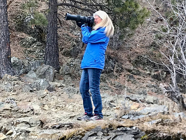 2019-12-03 Kathy Bolam photographing eag