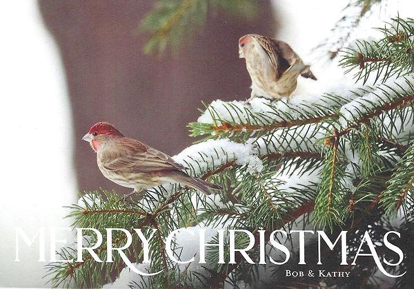2020-12-11 Christmas Card front.jpg