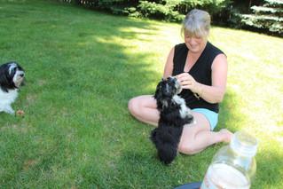 June - Daisie, Kath, Joey