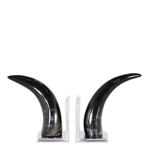 Horn Bookends Set of 2