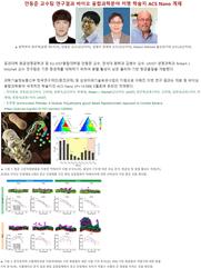 항균펩타이드 모방 수용성고분자 항생물질 개발 [ACS Nano]