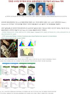 항균펩타이드 모방 수용성고분자 항생물질 개발 [ACS Nano