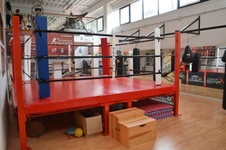 Ring e funzionale Global Gym Montepe