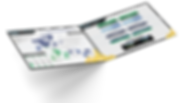 Bi Fold template (MT BR).png
