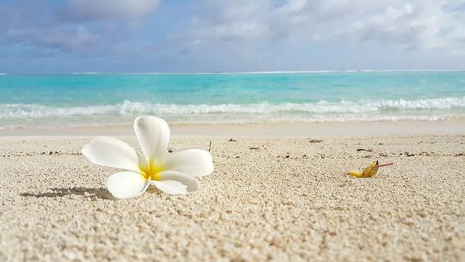 Beach F.jpg