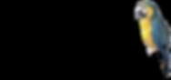 Лого TWIN PLAZA с попугаем_-01.png