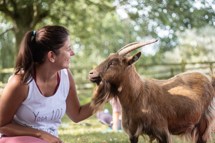 Goat Yoga-169.jpg