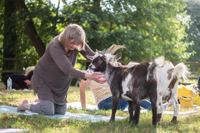 Goat Yoga-137.jpg