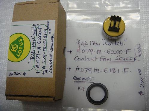 907/Esprit Radiator Fan Switch
