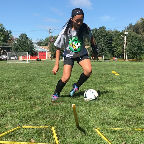 TBO Speed, Agility & Quickness Series